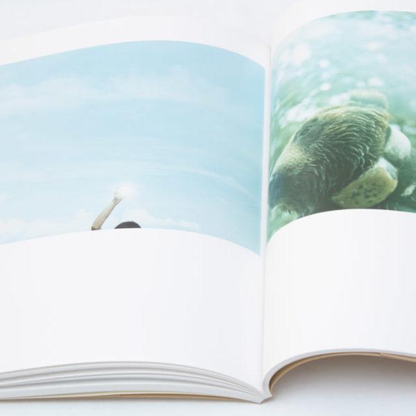 写真集 羽田誠 鳥は泳ぐ